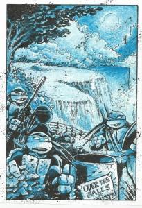 IDW TMNT #34 Niagra Falls Cover