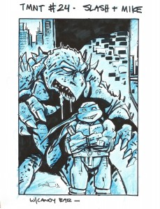 IDW TMNT Cover #24D