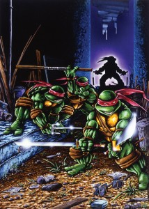 TMNT Collected 1