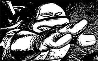 The Ninja Comic Explosion