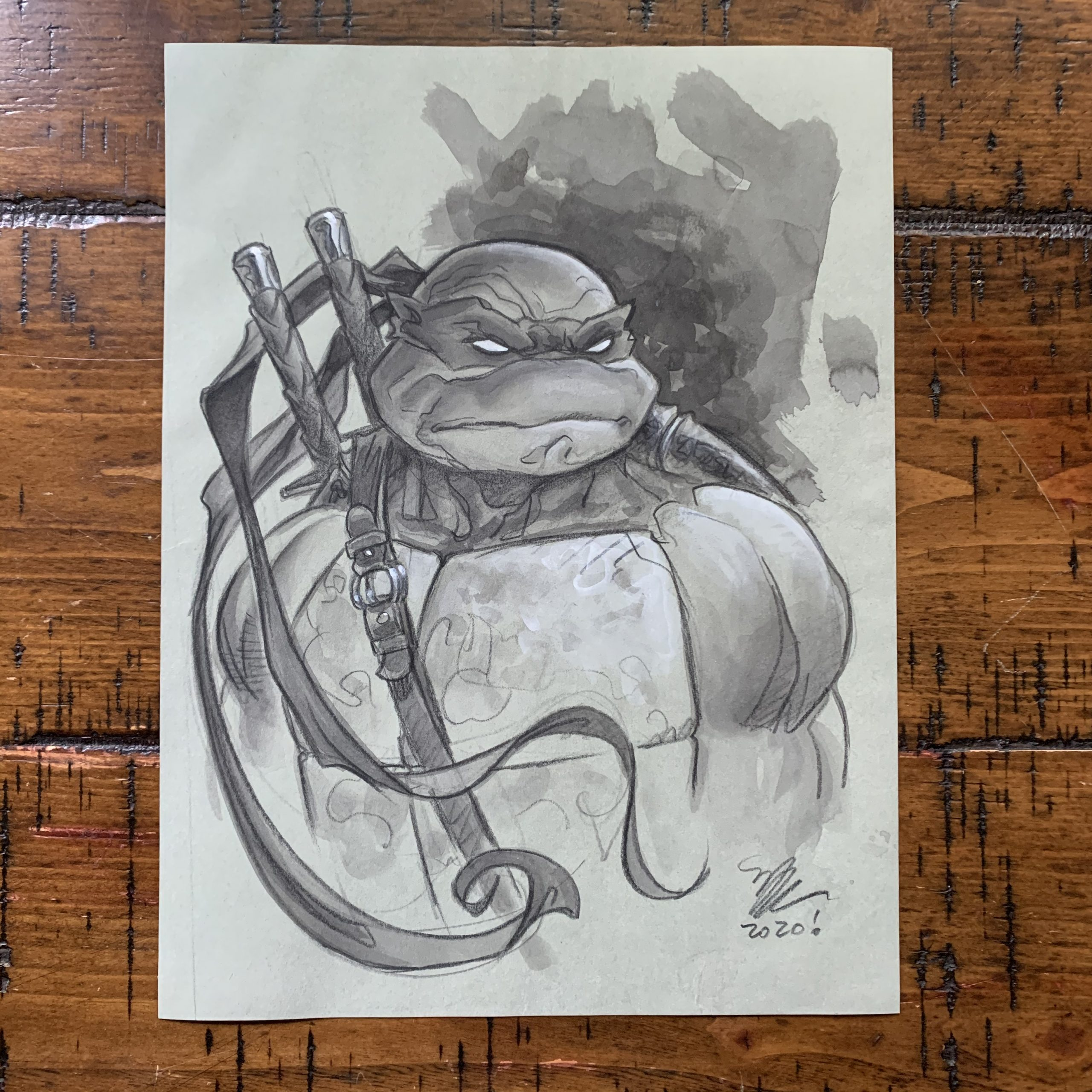 An Auction to Benefit Turtle Rehabilitation